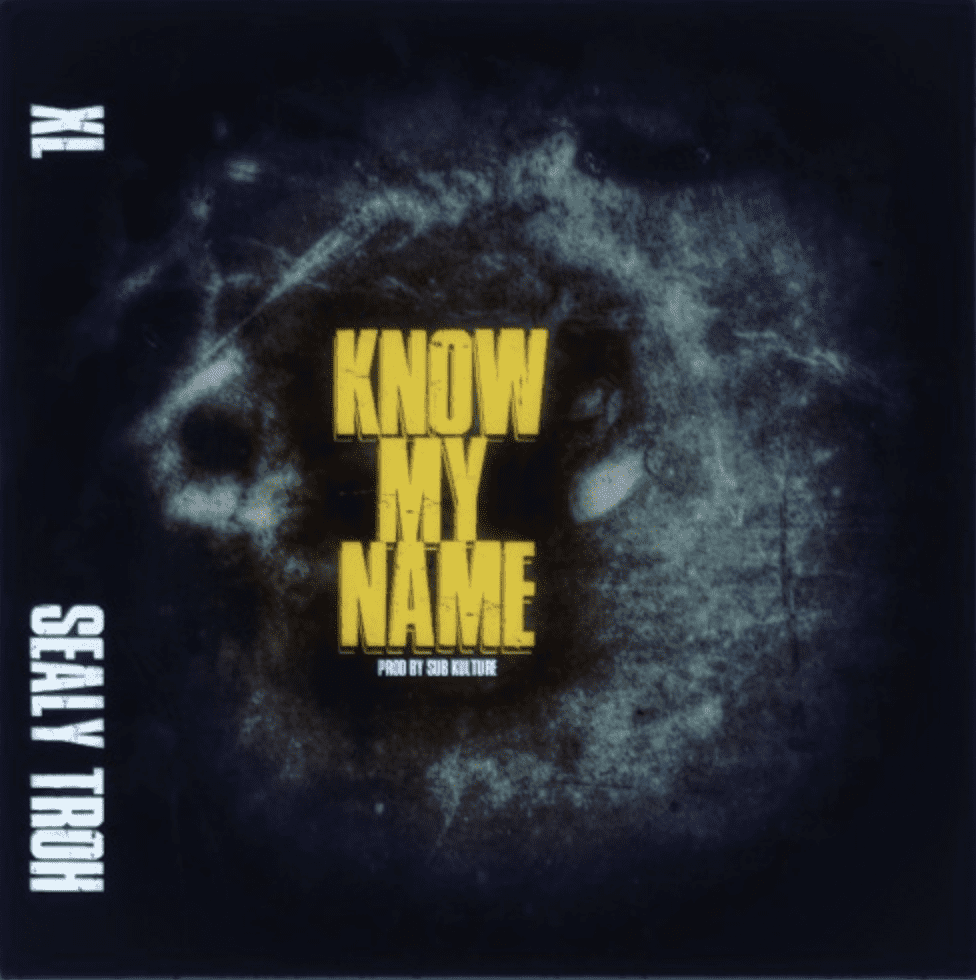 "Sealy Troh & XL Make A Statement With ""Know My Name"""