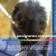 Boundary Drops 'Aerodynamics of Multimedia' EP