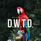 """Ben Sefton Drops """"D.W.T.D."""" Visual"""
